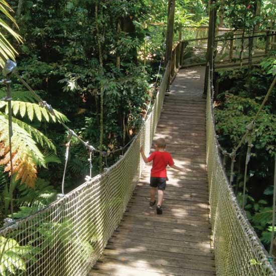 Le Zoo de Guadeloupe au Parc Mamelles